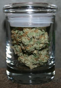 jars of weed 002 (348x500)